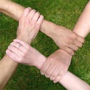 vwkp_hands